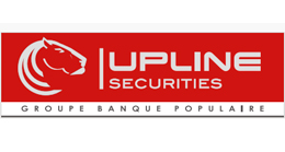 logo Upline Group