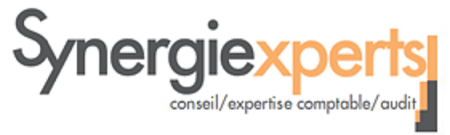 SYNERGIE EXPERTS